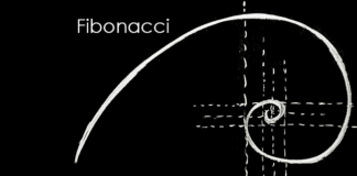 fibonacci forex